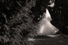Bride doing pirouette in the park Royalty Free Stock Images