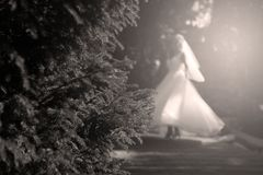 Bride doing pirouette in the park. Bride with white wedding dress doing a pirouette in the park, green alley Stock Photos