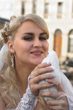 Bride and dove in hands royalty free stock photos