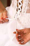 Bride dress tie. Bride  to tie bride white dress Royalty Free Stock Image
