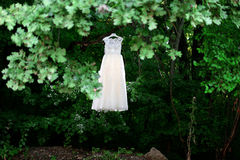 Bride dress in a tree Stock Photo