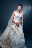 bride dress wedding Στοκ Εικόνες