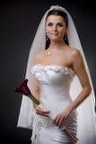 bride dress wedding Στοκ φωτογραφία με δικαίωμα ελεύθερης χρήσης
