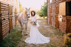 Young boho style bride is stroking white horse royalty free stock photos