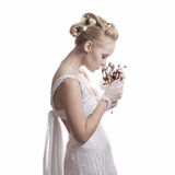 Bride with dry flowers. Pretty young bride with flowers isolated on white background Royalty Free Stock Photography