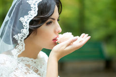 Bride eating cake Stock Photos