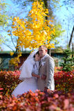 The bride embraces the groom on the autumn avenue Royalty Free Stock Photography
