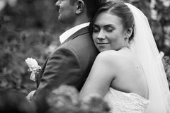 Bride embracing groom from back at park Royalty Free Stock Images