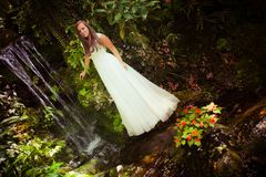 Bride in fairy forest Stock Image