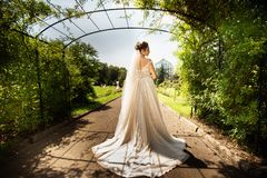 Bride in fashion wedding dress on natural background. A beautiful woman portrait in the park. Back view stock photo