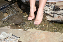 Bride feet in the cool clear stream Stock Images