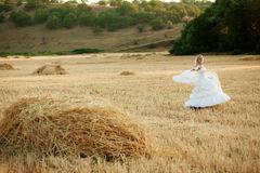 Bride in field Stock Images