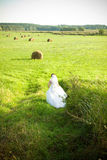 Bride on the field Royalty Free Stock Image