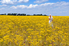 Bride in a Field of Flowers Royalty Free Stock Image