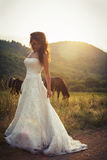 Bride in a field with horses Royalty Free Stock Image