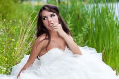 A bride in the field Stock Images