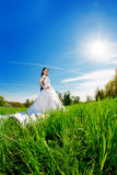 Bride on a field in the sunshine Stock Photography