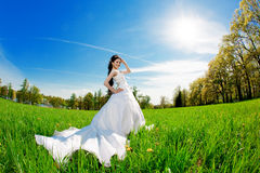 Bride on a field in the sunshine Stock Photo