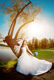 Bride on a field in the sunshine Royalty Free Stock Image