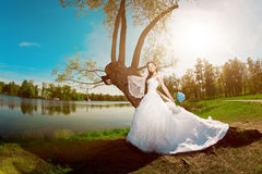Bride on a field in the sunshine Royalty Free Stock Photos
