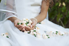 Bride first holy communion flowers Stock Images