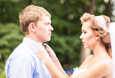 The Bride Fixing  Bow Tie of groom Stock Image