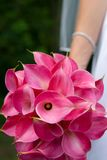 Bride flowers. Bride holding flowers cala lillies Stock Photo