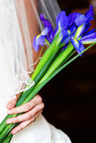 Bridal portrait of bride holding purple flowers. Image of a bridal with the bride holding purple flowers, veil showing, hand and wedding ring, green Stock Photos