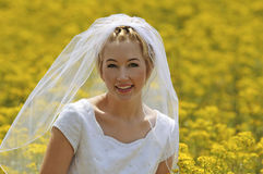Bride in a flowers field Stock Photography