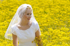 Bride in a flowers field Royalty Free Stock Images