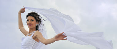 The bride with a fluttering veil Stock Photography