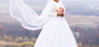 Bride with flying long veil Stock Photos