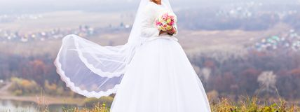Bride with flying long veil Stock Images