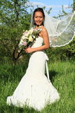 Bride with flying veil on wedding Royalty Free Stock Photos