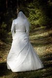 Bride In The Forest Royalty Free Stock Photography