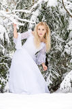 Bride in the forest in winter Royalty Free Stock Image