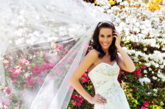 Bride in front of flowers with veil. Bride standing in front of flowering bushes with veil blowing in the wind Royalty Free Stock Photos