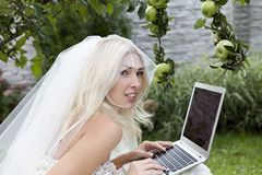 The bride in the garden. A bride using a laptop Stock Images