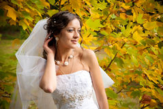 Bride in a garden. With yellow leaves Stock Image