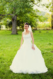 Bride in garden Stock Photos