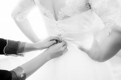 Bride getting dressed. And buttoned Stock Photography