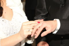 Bride give a ring groom Royalty Free Stock Photography