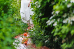 Bride among green bushes Stock Image