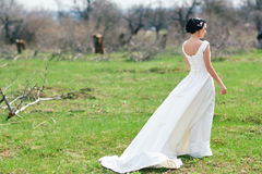 The bride on a green meadow Stock Images