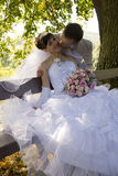 Bride and grome kissing. Bride and groom are sitting on bench and kissing Royalty Free Stock Images