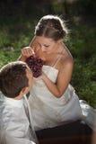 Bride and groom. шт autumn park Royalty Free Stock Photos