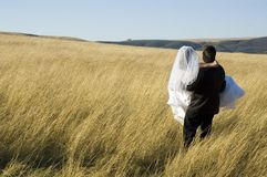 Bride and Groom. Groom carries bride into golden field at sunset stock photography