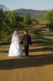 Bride and Groom. Walking down a dirt road holding hands stock photography
