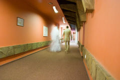 Bride and groom. Moving bride and groom in the hotel corridor Royalty Free Stock Photos