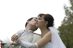 Bride and groom. Stock Photos